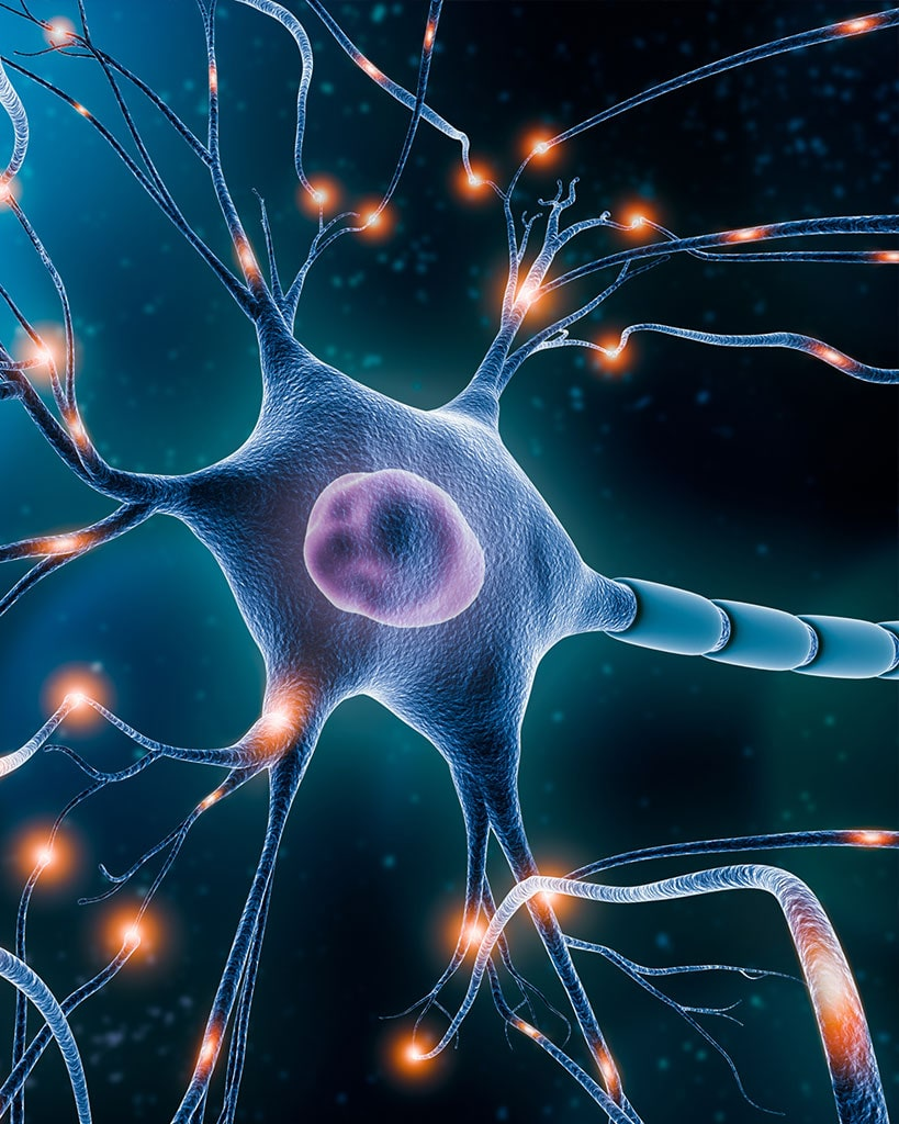 Neurorestoration